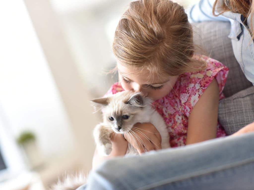 Une petite fille avec son chat de compagnie